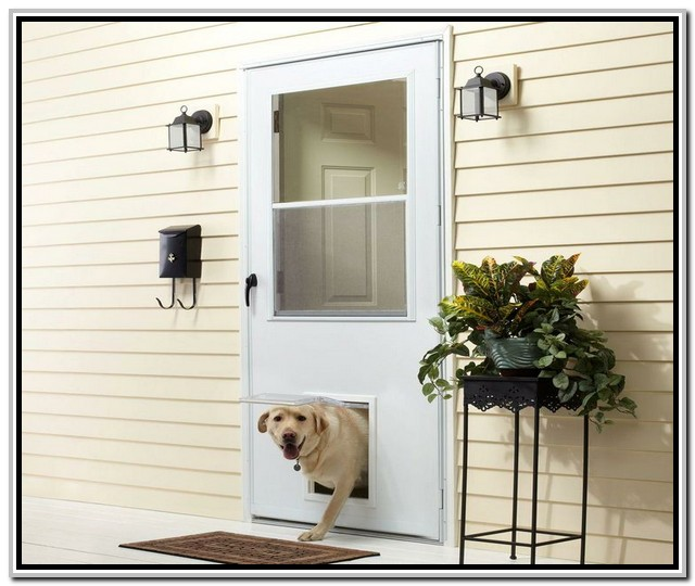 20 Storm Doors Hardware Storm Doors With Pet Door Interior Ex