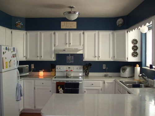 Painting-kitchen-cabinets-good-idea-photo-7