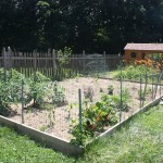 20 things to know about Vegetable garden fence chicken wire