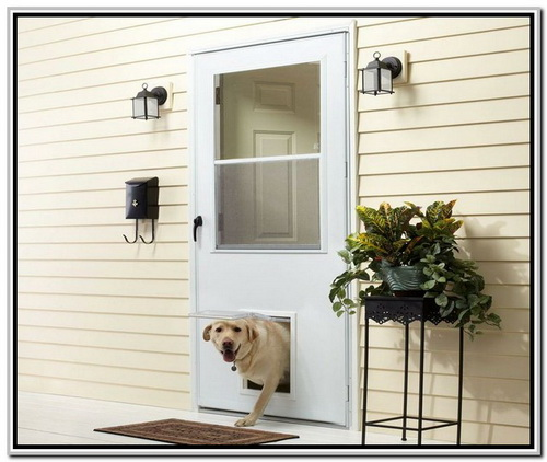 25 Factors To Consider Before Installing Dog Door For Screen Door Interior
