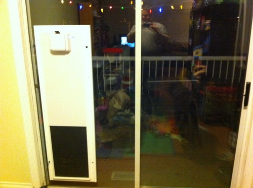 Dog-door-for-screen-door-photo-12