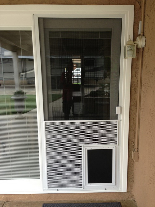 Exterior door with doggie door pet door gallery pet for Exterior screen doors