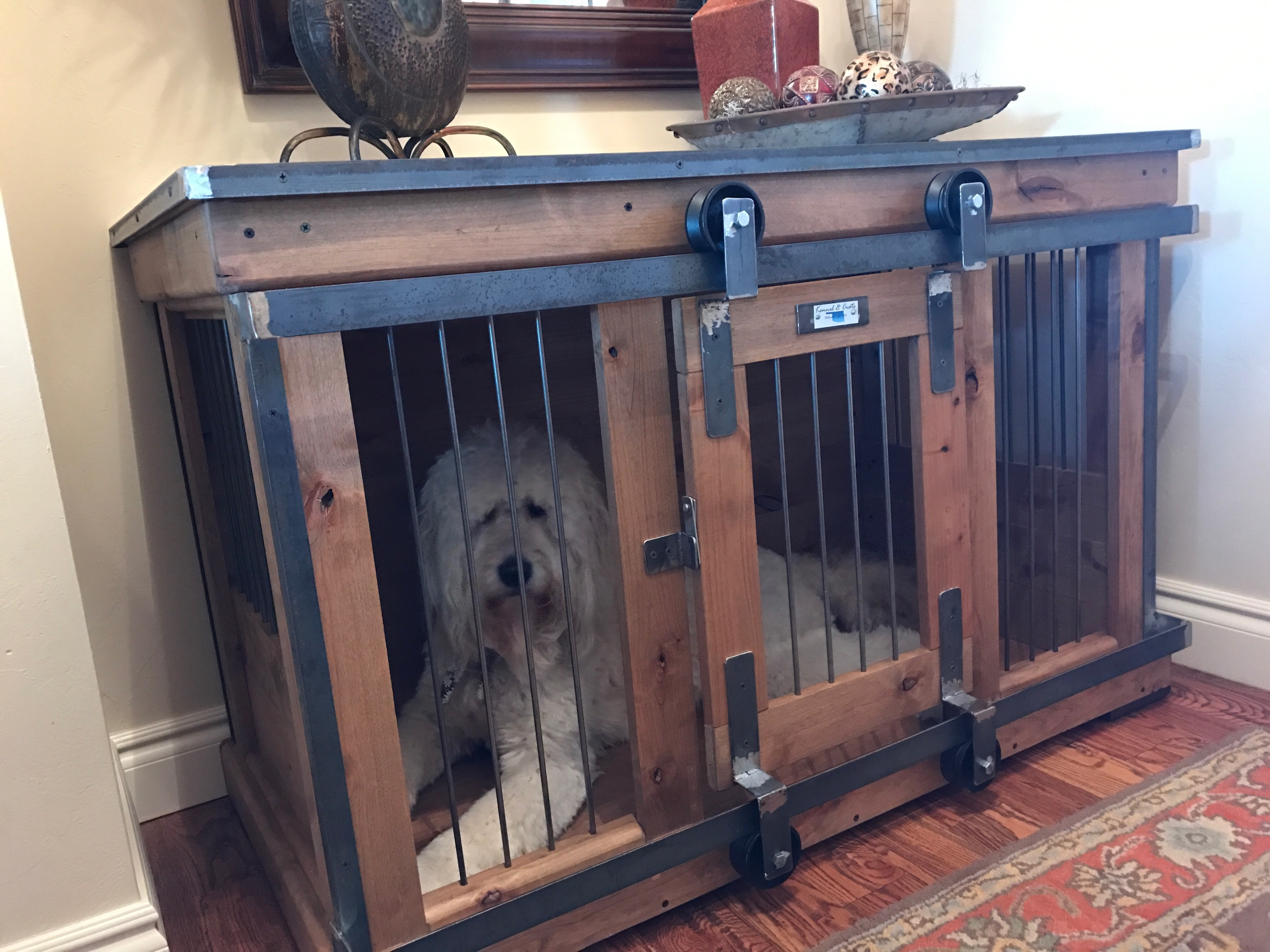 Dog Kennel Doors 20 Adventiges For Your Pets Interior Amp Exterior Ideas
