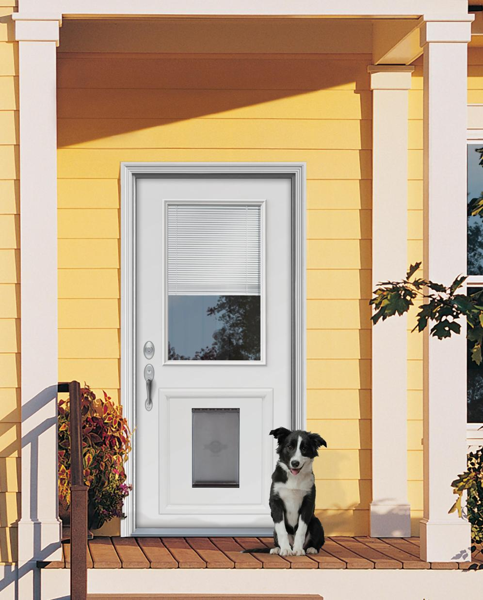 Door with built in dog door must have for dog owners for Exterior door with built in pet door