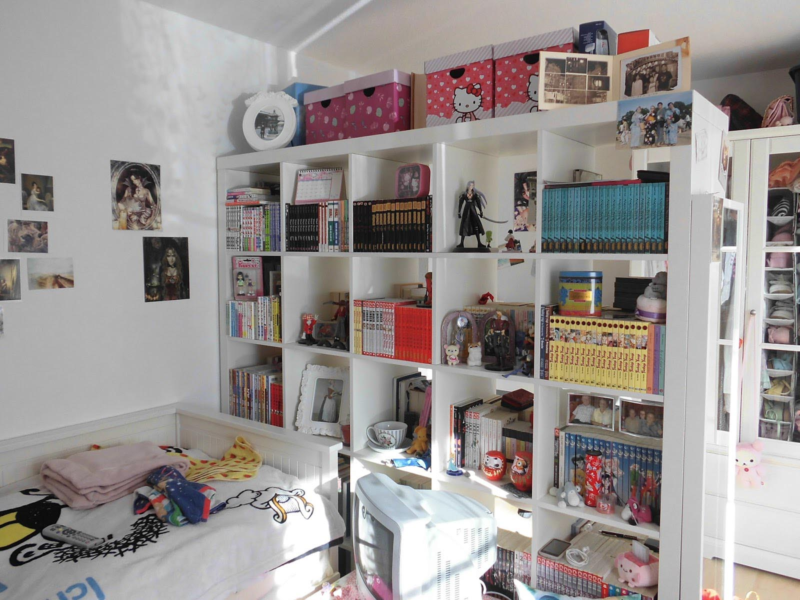 Ikea room dividers wall perfect solution for visual for Ikea room devider