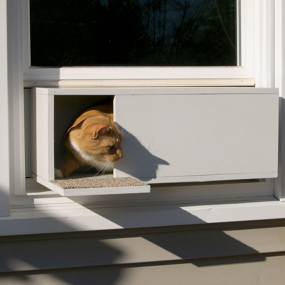 20 Types Of Cat Doors Interior Amp Exterior Ideas