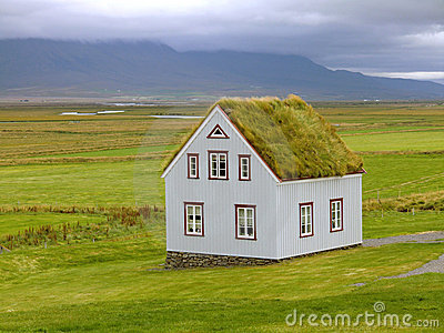 Eco House Grass Roof photo - 6
