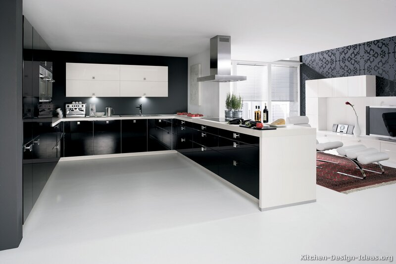 Modern Black and White Kitchen photo - 4