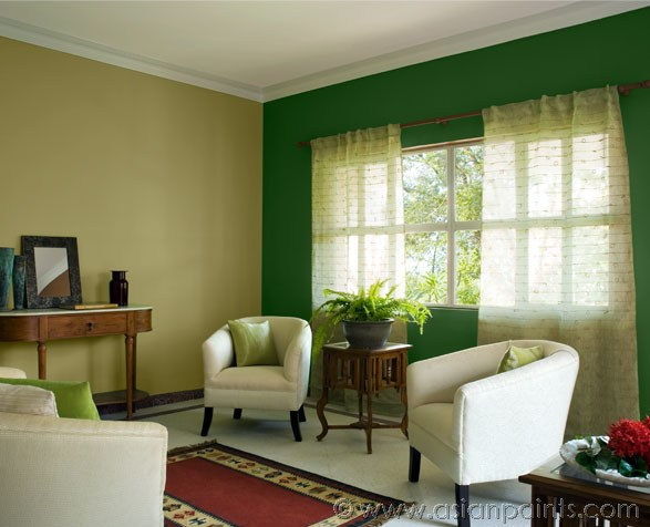 asian paints colour shades for living room interior exterior doors. Black Bedroom Furniture Sets. Home Design Ideas