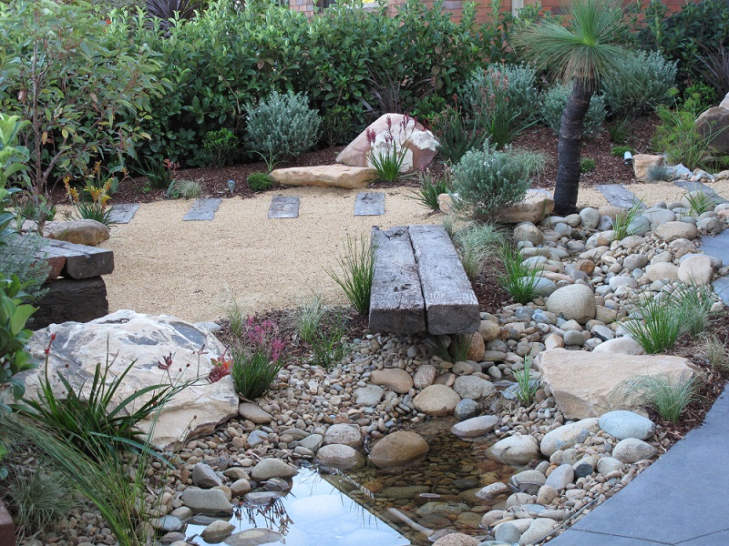 australian native plants for rock gardens photo - 2