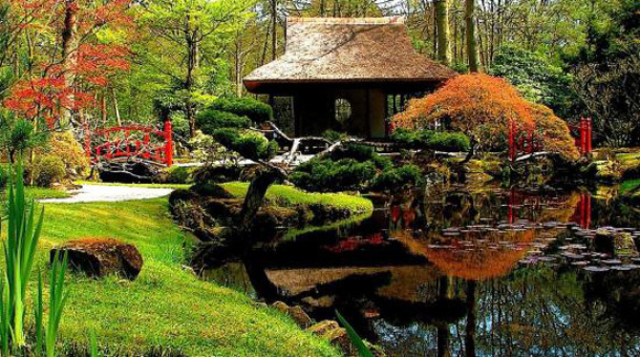 backyard japanese garden design ideas photo - 3