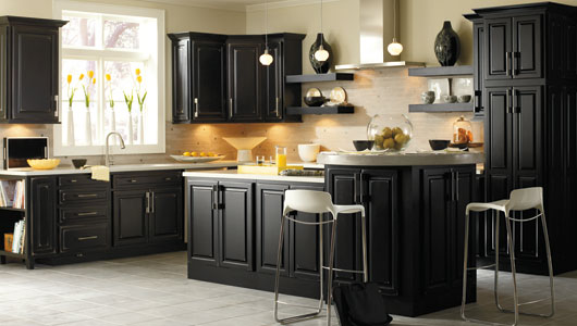 black cabinets for kitchen photo - 6