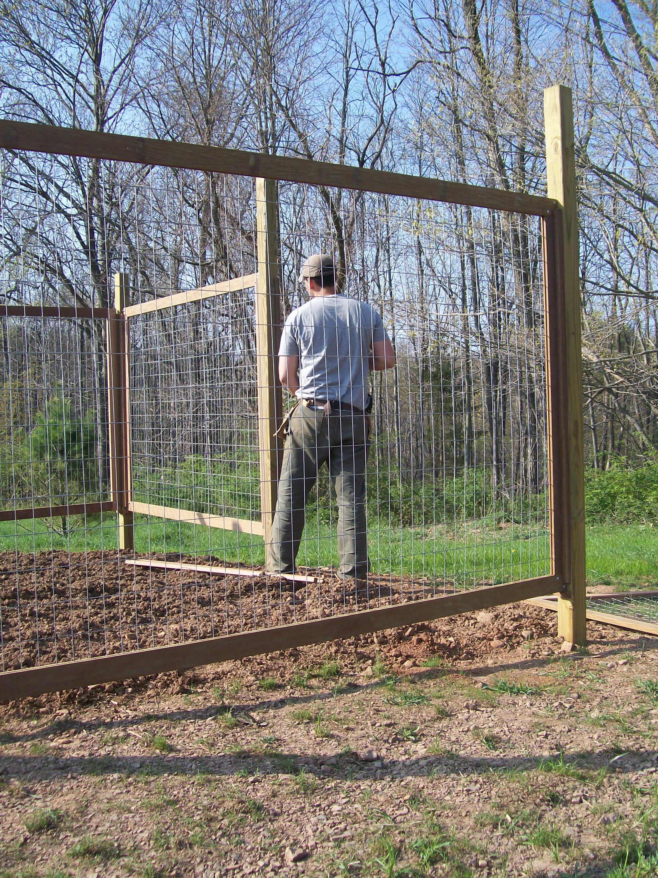 building a vegetable garden fence photo - 1