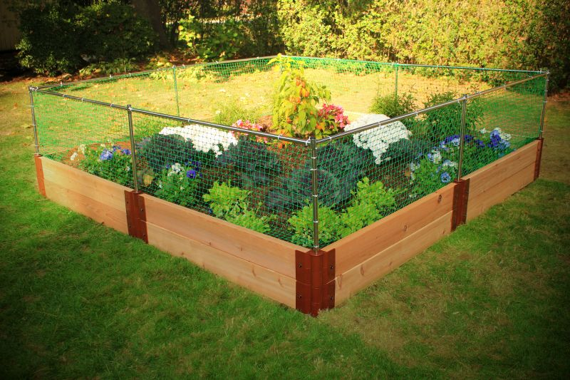 building a vegetable garden fence photo - 3