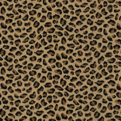 cheetah print bedroom wallpaper interior exterior doors