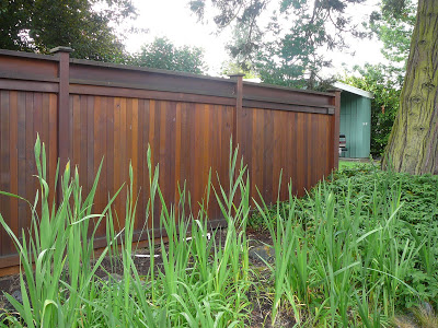 contemporary garden fencing ideas photo - 3