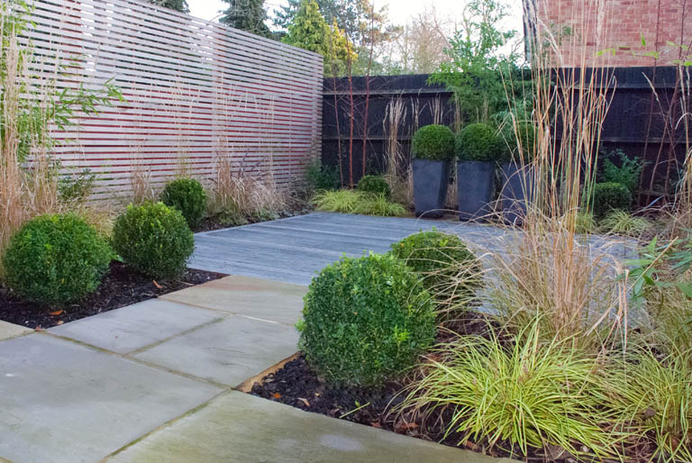 contemporary garden plant ideas photo - 1