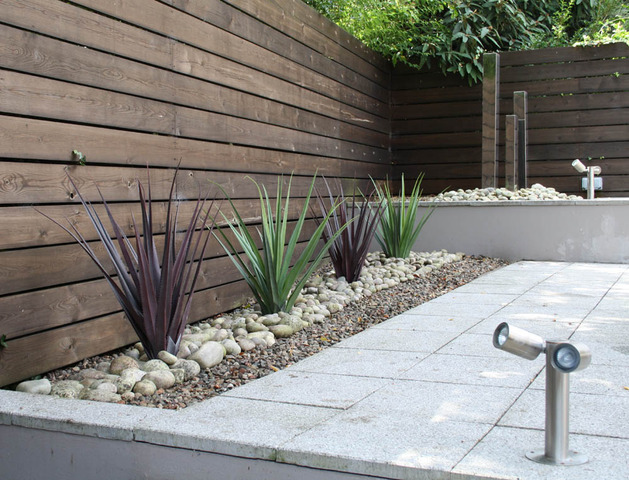 contemporary garden plant ideas photo - 6