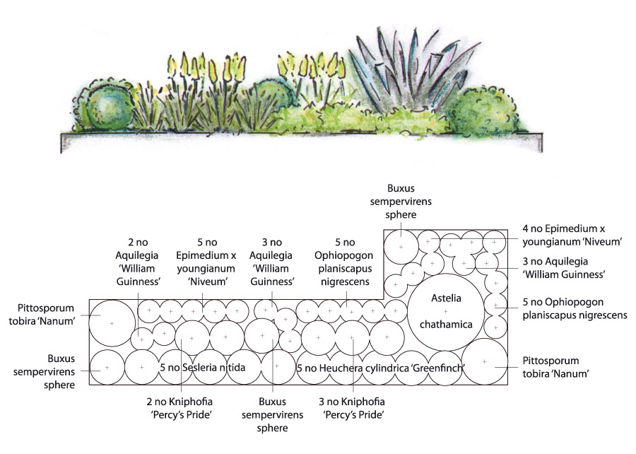 contemporary garden planting plans photo - 1