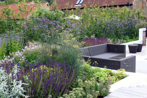 contemporary garden planting plans photo - 4