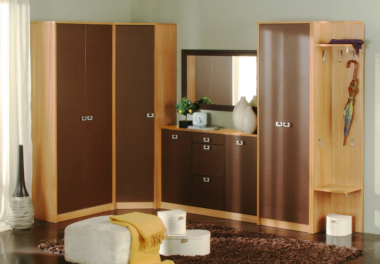 cupboard designs for bedrooms photo - 1