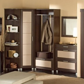 cupboard designs for women photo - 6