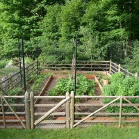 decorative deer fence ideas photo - 6