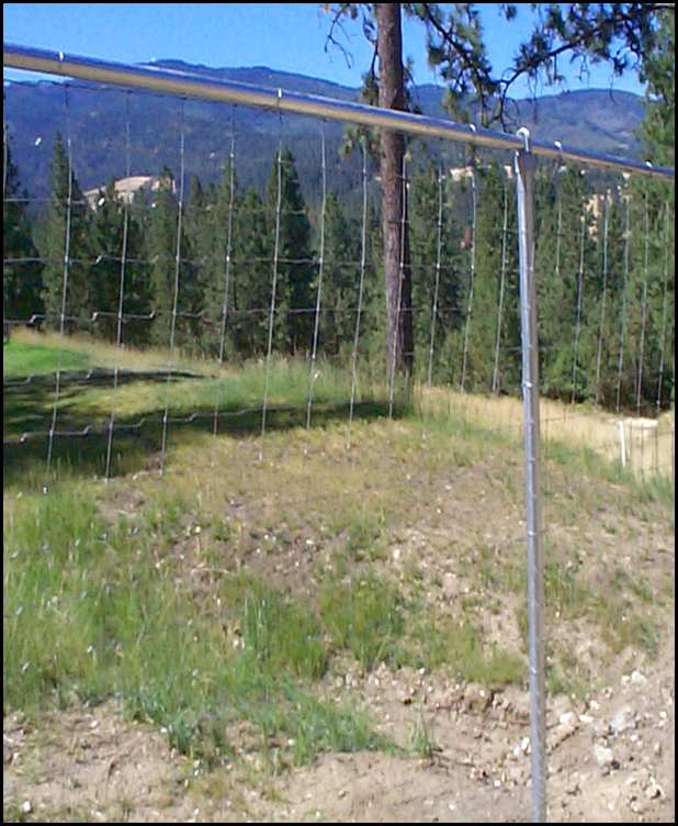 deer fence design ideas photo - 3