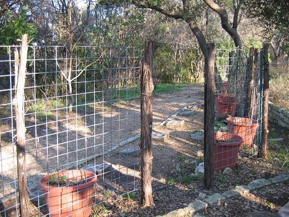 deer fence post ideas photo - 3