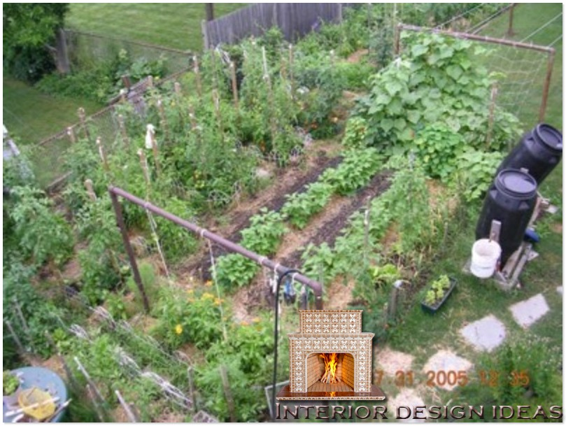 designing an urban vegetable garden photo - 1