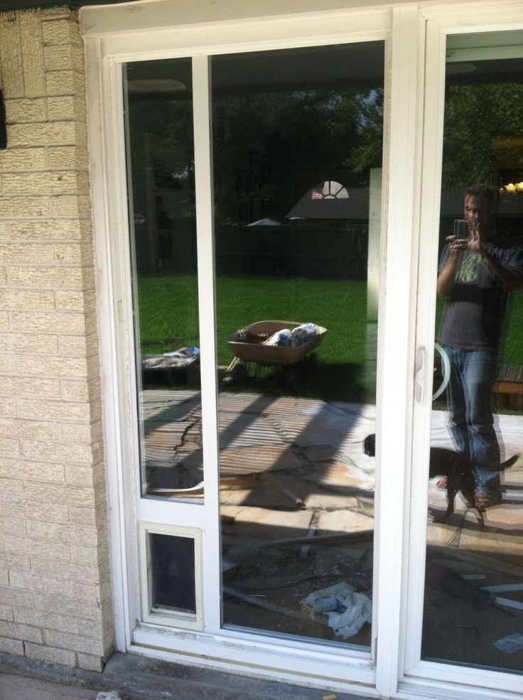 dog door for sliding door photo - 3