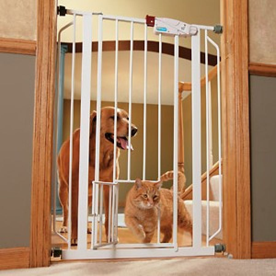 Image Result For Dog Gates Dog Doors Stair Barriers Orvis