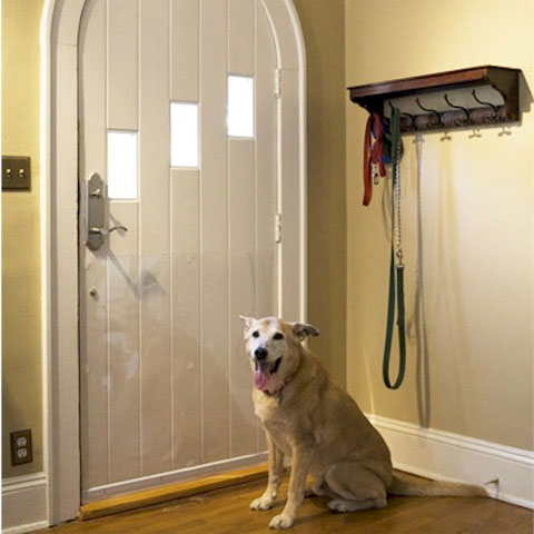 20 Things To Know About Dog Scratching Door Interior