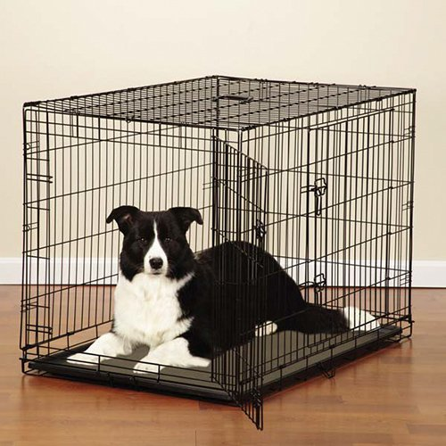 double door dog crate photo - 5