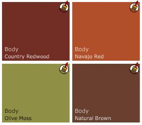 earthy wall paint colors photo - 2