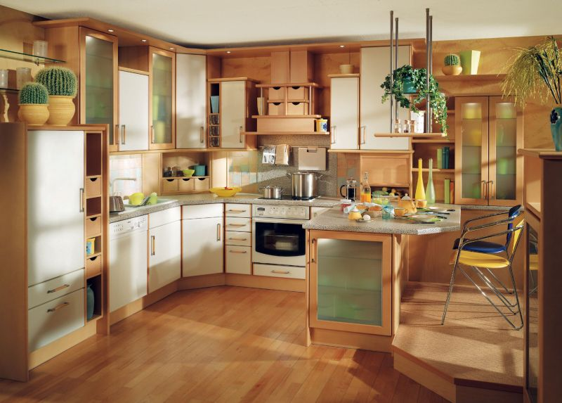 efficient kitchen design ideas photo - 5