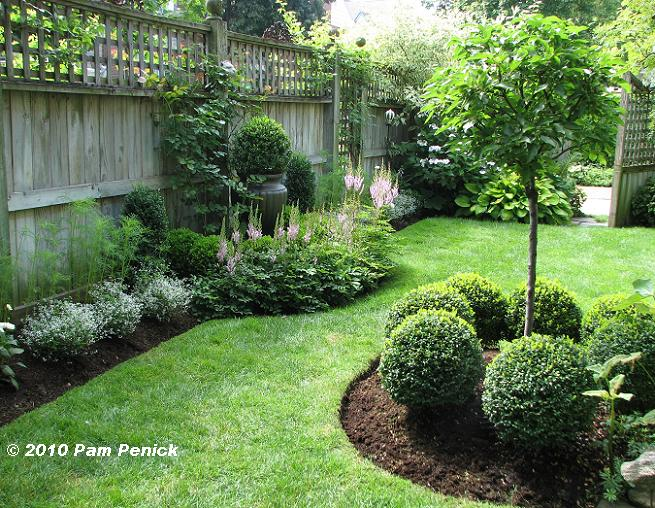 evergreen garden design ideas photo - 1