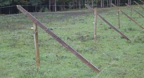 fencing ideas to keep deer out photo - 5