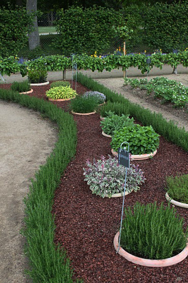 garden design ideas dogs photo - 1