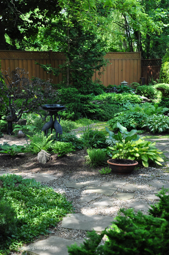 garden design ideas dogs photo - 4