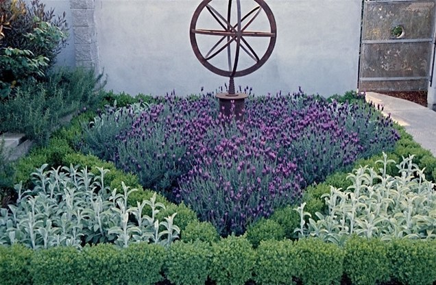 garden design ideas lavender photo - 6