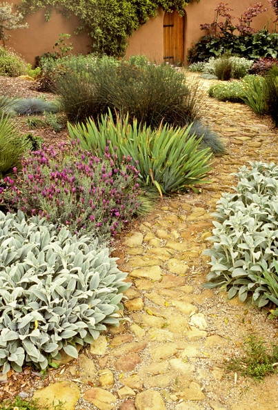garden design ideas mediterranean photo - 5