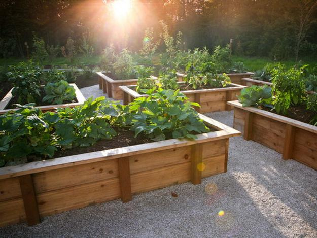 garden design ideas raised beds photo - 3