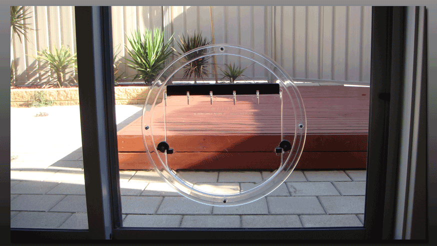 glass dog door photo - 4
