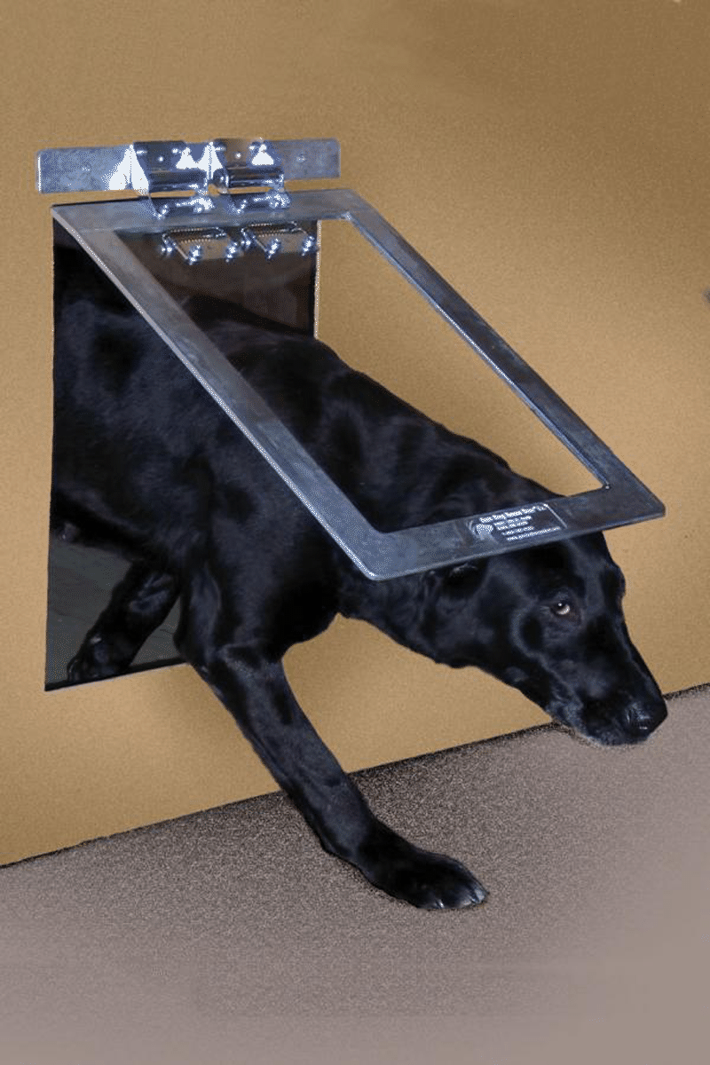 heavy duty dog door photo - 1