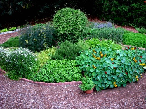 Herb Garden Design Ideas design ideas garden herb small Small Herb Garden Design Ideas