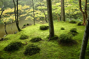 japanese tea garden design ideas photo - 5