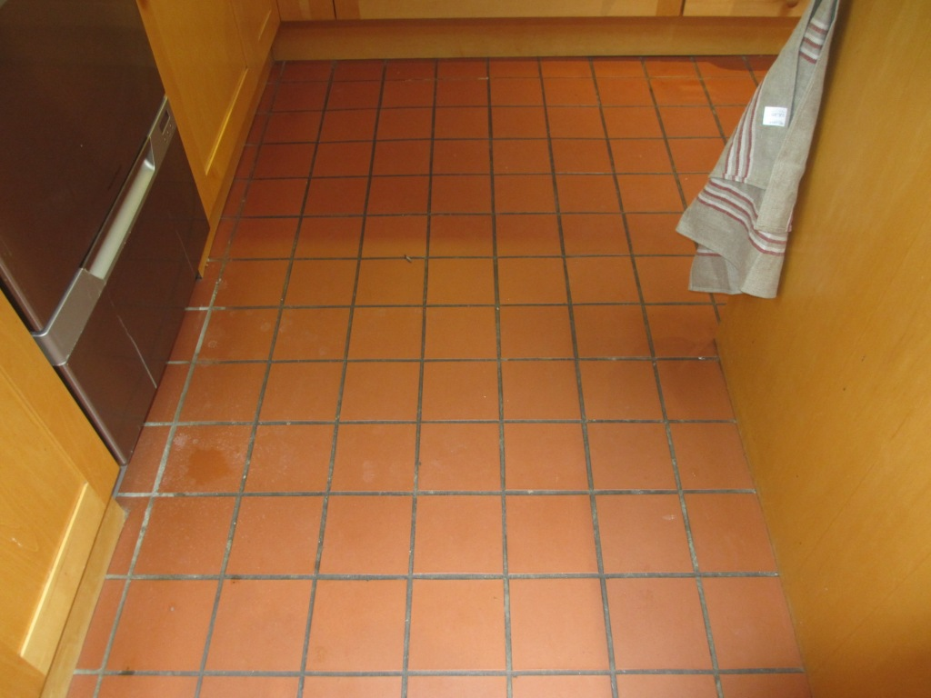 kitchen floor tile and grout cleaner photo - 6