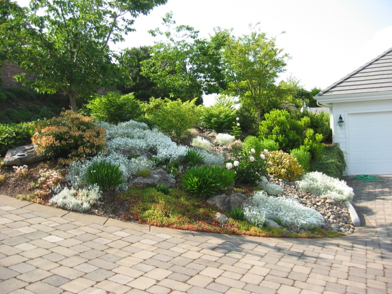 large garden design examples photo - 2