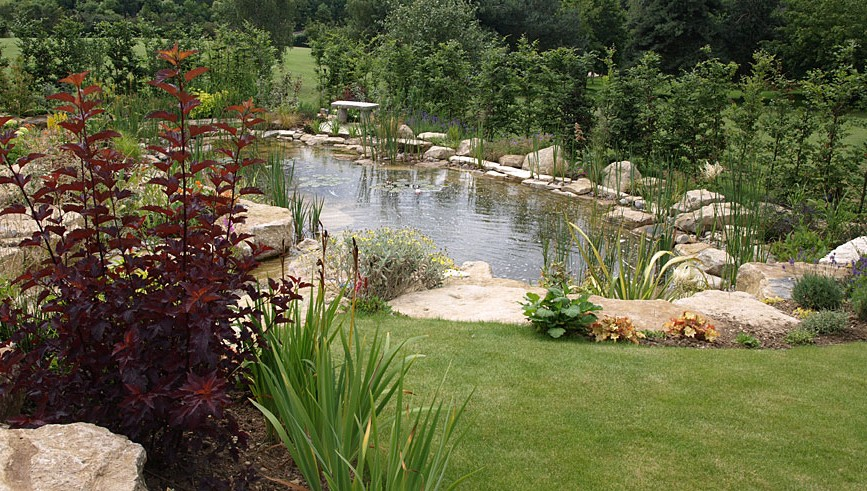 Image gallery large backyard pond designs for Garden ponds designs pictures